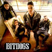 BitDogs