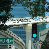 Miami Experience