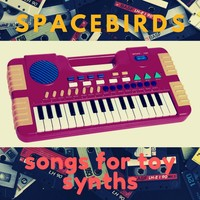 Songs for Toy Synths