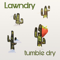 Tumble Dry
