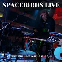 Spacebirds