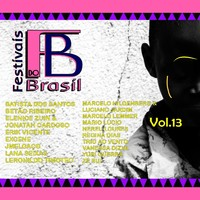 Festivais do Brasil, Vol. 13