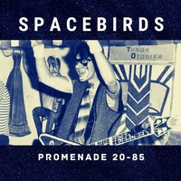 Promenade 20-85