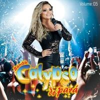 Banda Calypso do Pará, Vol. 5