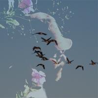 Aos Pássaros Outonais