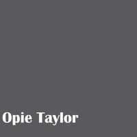 Opie Taylor